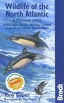 Wildlife of the North Atlantic