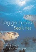 Loggerhead Sea Turtles Book PDF