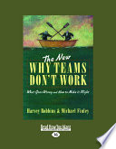 The New Why Teams Don t Work  Large Print 16pt  Book