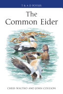 The Common Eider