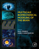 Multiscale Biomechanical Modeling of the Brain