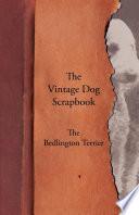 The Vintage Dog Scrapbook   The Bedlington Terrier