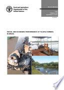 Social and economic performance of tilapia farming in Brazil