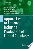 Approaches to Enhance Industrial Production of Fungal Cellulases