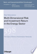 Multi-dimensional Risk and Investment Return in the Energy Sector