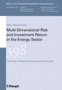 Multi dimensional Risk and Investment Return in the Energy Sector