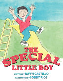 The Special Little Boy ebook