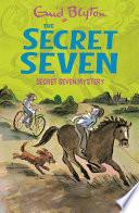 Secret Seven Mystery Book