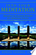 Into Your Meditation  Metaphors on Essential Elements of a Meditation Practice