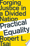 Practical Equality  Forging Justice in a Divided Nation