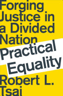 Practical Equality: Forging Justice in a Divided Nation [Pdf/ePub] eBook