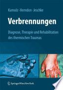 Verbrennungen  : Diagnose, Therapie und Rehabilitation des thermischen Traumas
