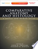 Comparative Anatomy and Histology