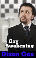 Gay Awakening Book