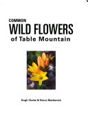 Common Wild Flowers Of Table Mountain