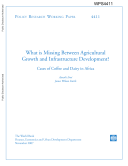 What is Missing Between Agricultural Growth and Infrastructure Development  Cases of Coffee and Dairy in Africa