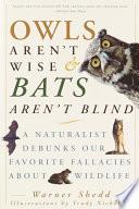 Owls Aren t Wise   Bats Aren t Blind