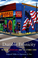 Durable Ethnicity Pdf/ePub eBook