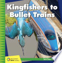 Kingfishers to Bullet Trains