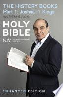 NIV Bible: the History Books - Part 1