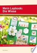 Mein Lapbook: Die Wiese