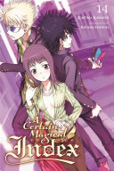 A Certain Magical Index, Vol. 14 (light novel)