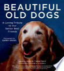 Beautiful Old Dogs Book
