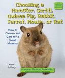 Choosing a Hamster  Gerbil  Guinea Pig  Rabbit  Ferret  Mouse  or Rat