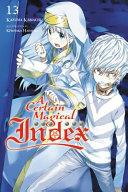 A Certain Magical Index  Vol  13  light novel
