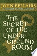 The Secret of the Underground Room