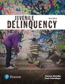 Juvenile Delinquency  Justice Series  Book