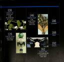 The Jewelry Design Source Book