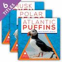 Arctic Animals at Risk  Set