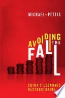 Avoiding the Fall Book