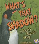 Pdf What's That Shadow?