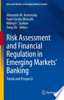 Risk Assessment and Financial Regulation in Emerging Markets    Banking Book