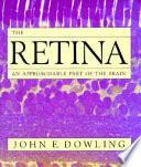 The Retina Book PDF