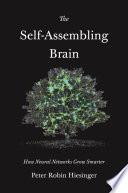 The Self Assembling Brain