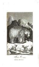 Страница 554