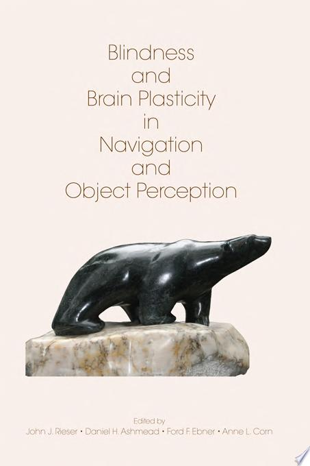 Blindness and Brain Plasticity in Navigation and Object Perception