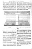 Strona 599