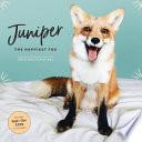 Happiest Fox