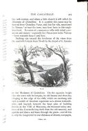 第 425 頁