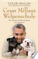 Cesar Millans Welpenschule  : Die richtige Hundeerziehung von Anfang an