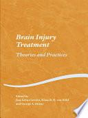 Brain Injury Treatment Book