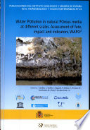 Water Pollution In Natural Porous Media At Different Scales Book PDF