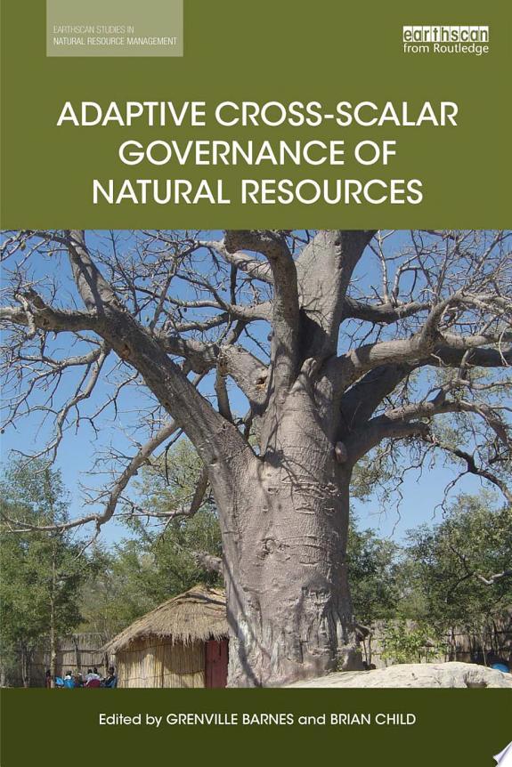 Adaptive Cross-scalar Governance of