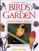 Attracting Birds to Your Garden in Southern Africa
