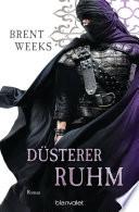 Düsterer Ruhm  : Roman