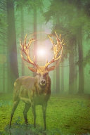 Deer in the Emerald Green Forest Journal